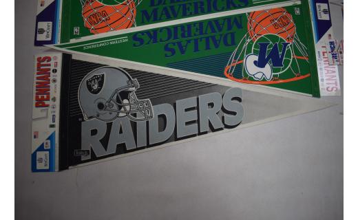 Los Angeles Raiders #1